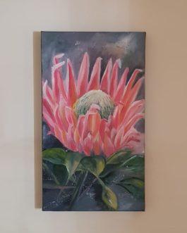 Wall art ,Protea Patience